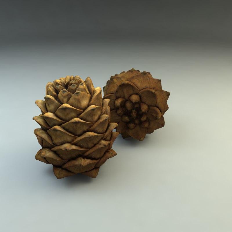 3d model pinecone cone