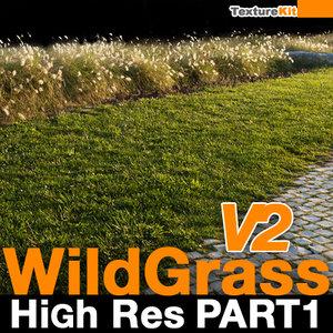 Wild Grass V2 High Res Part 1