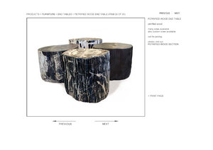 hudson petrified wood end table 3d model
