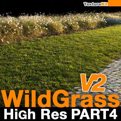Wild Grass V2 High Res Part 4