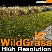 Wild Grass V2 High Resolution