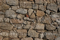 Wall_Texture_0057