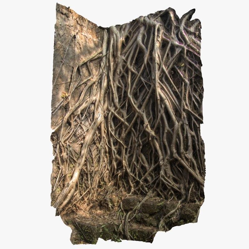 max banyan roots wall scan