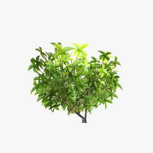 3dsmax plant 10