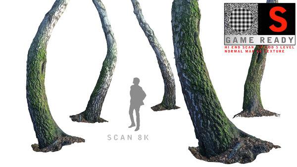 3d birch-tree tree