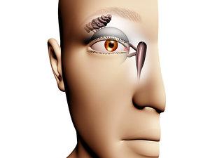 3d model lacrimal drainage