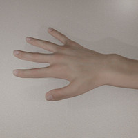 female realistic hand obj
