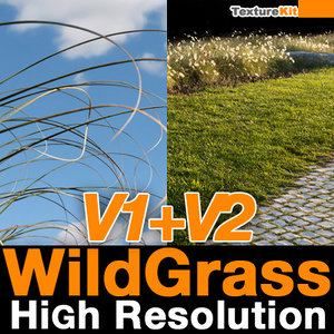 Wild Grass V1 & V2 High Resolution