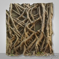 Banyan Roots Wall 2