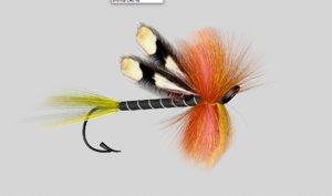 salmon fly shrimp 3d model