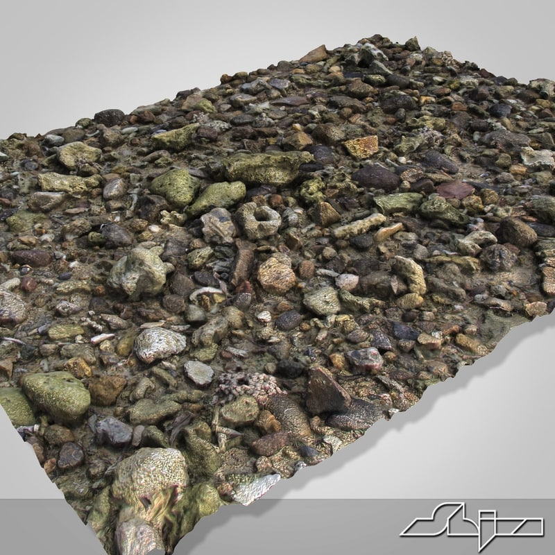 rocky surface max