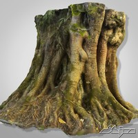 Tropical Tree 3D Scan