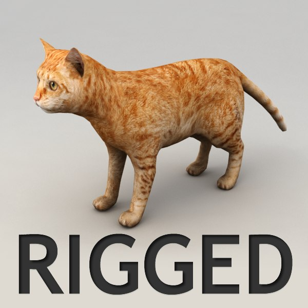 3dsmax rigged red cat