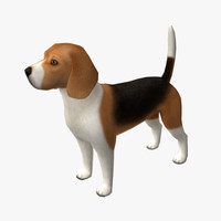 3d beagle edge model