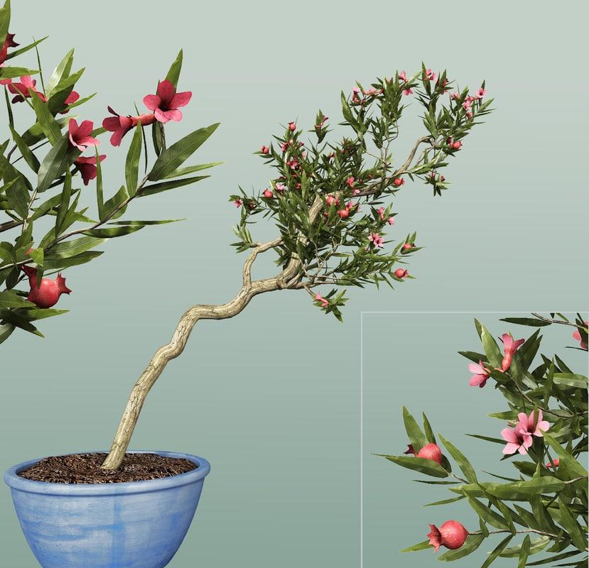 3ds max pomegranate tree