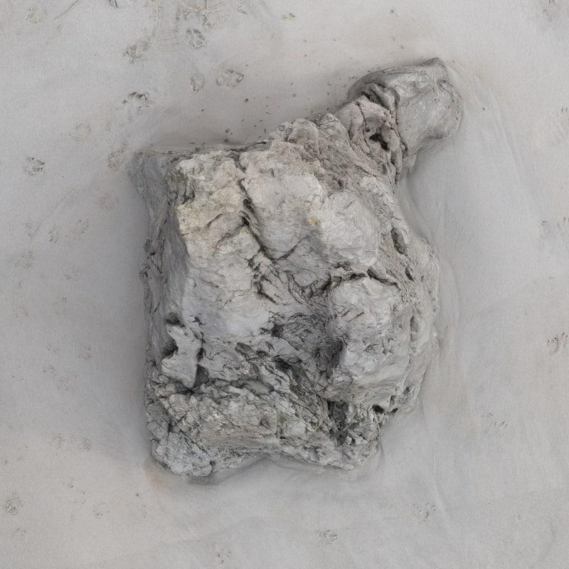 3d scan rock model