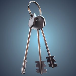 bunch keys max