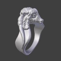 Goat Ring
