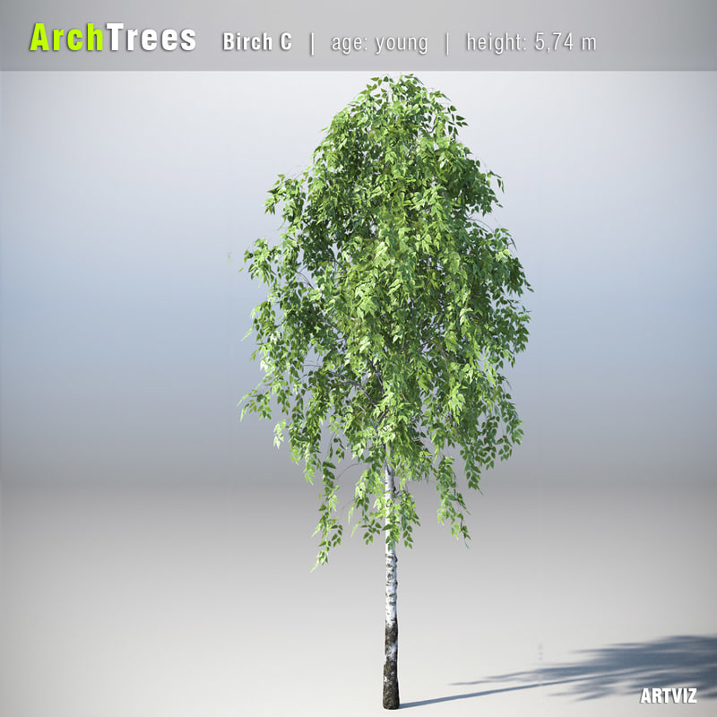 obj archtrees trees