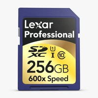 3ds max sd card 256 gb