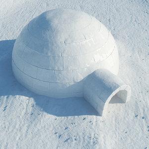 igloo snow 3d max