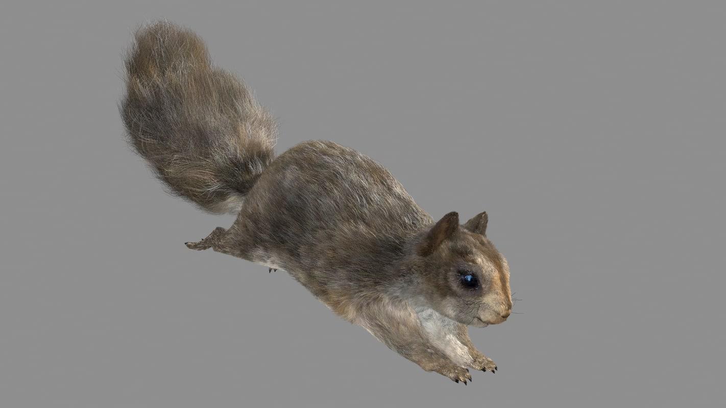 squirrel rigged run fur hair 3d max