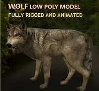 wolf rigged animations 3d model