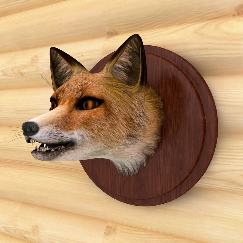 fox red head 3d max