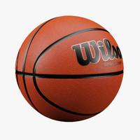 Basketball Wilson