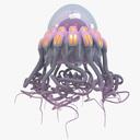 cartoon jellyfish 3D models