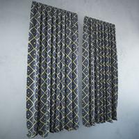max curtains modern
