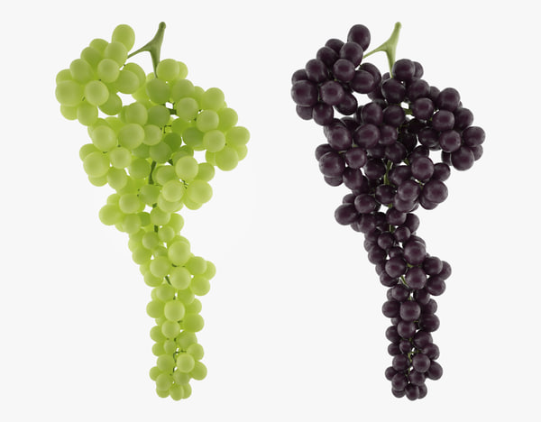 3d grape purple nature