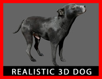 3d model realistic dog