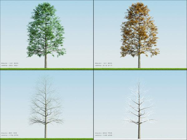 4 season tree ash002 obj