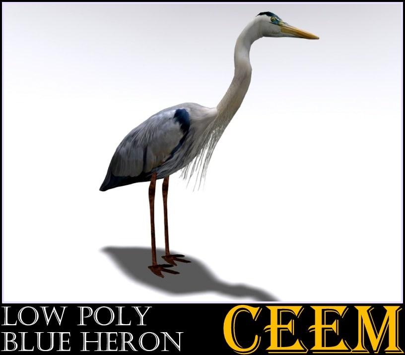 3d model bird heron
