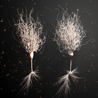 Ultra Realistic Detailed Neurons