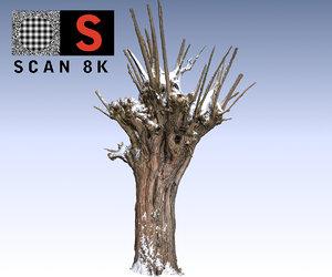 3d willow snow 2