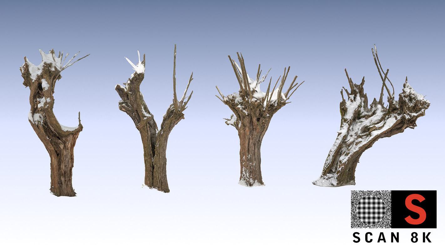 3d willow snow model