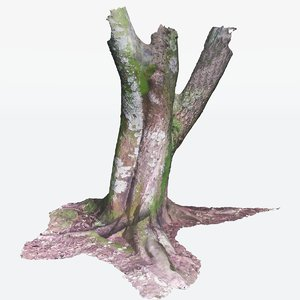 maya scan tree