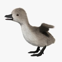 maya cygnet animation fur