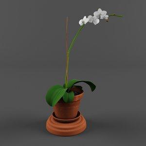 free orchid pot 3d model