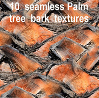 Palm Tree Bark Collection 1