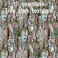 Tree Bark Collection 2