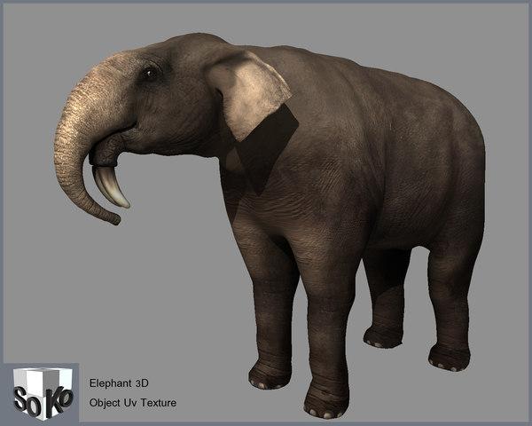 3d model elepnant elephant