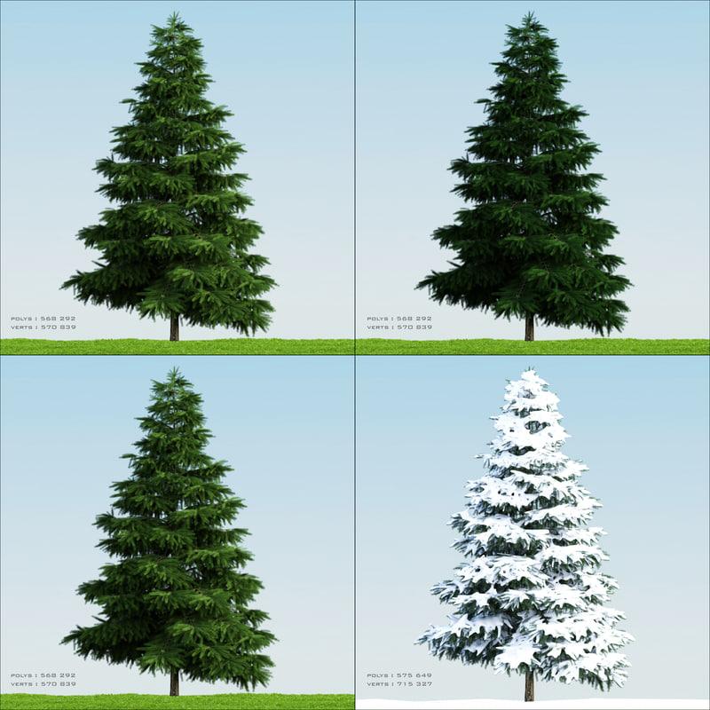 4 season tree pine003 3d obj