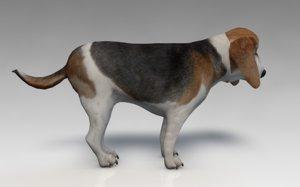 dog beagle pet 3ds
