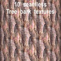 Tree Bark Collection 3
