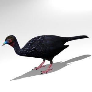 3d model guan crested
