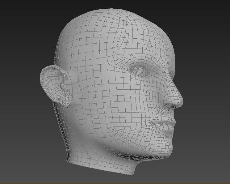 3d man face model