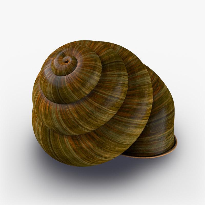 obj snails shell